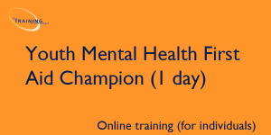 Youth Mental Health First Aid Champion 1 day (online for individuals)