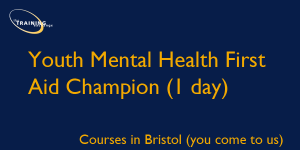 Youth Mental Health First Aid Champion (1 day)